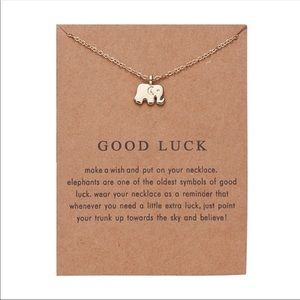 Super cute good luck necklace